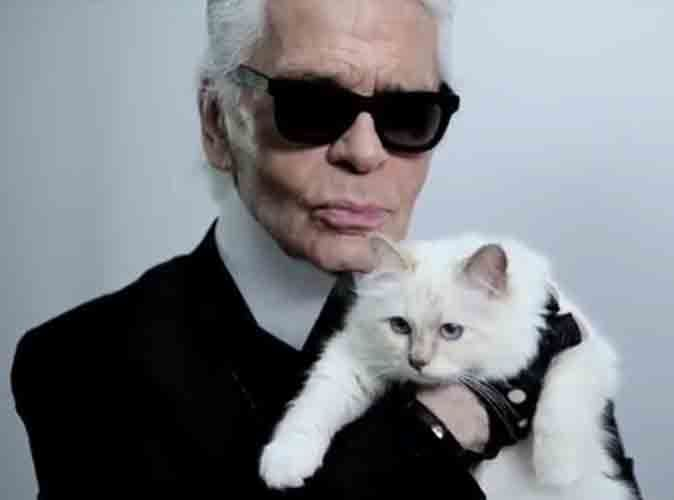 mode choupette le chat de karl lagerfeld une g rie de choix. Black Bedroom Furniture Sets. Home Design Ideas