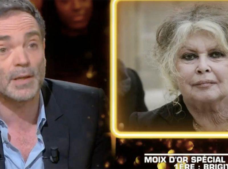 """""""Et Dieu créa l'infâme"""" : Yann Moix dézingue Brigitte Bardot dans Les terriens du samedi"""