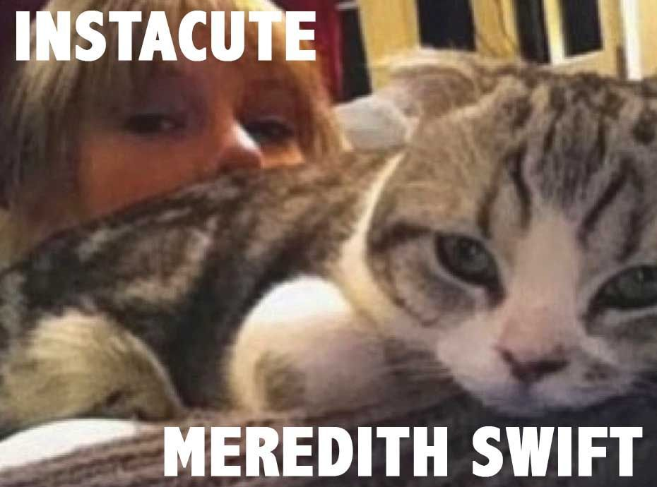 Meredith : Le chat super star de Taylor Swift !