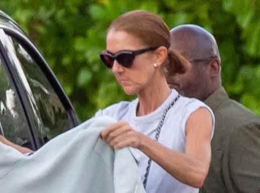 """Céline Dion en deuil : elle confie son """"chagrin"""" et lance un appel au don"""