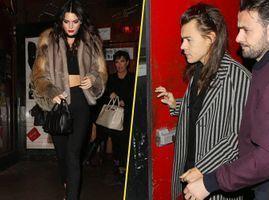 Kendall Jenner et Harry Style : un rendez-vous avec leurs parents !