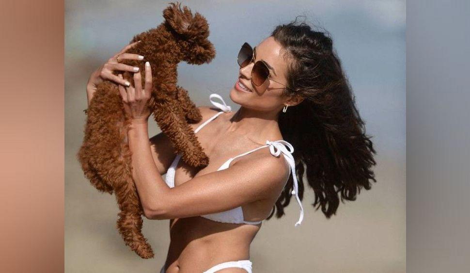 L'actrice et ancienne Miss Univers Olivia Culpo fait sensation dans un bikini blanc à moins de 20 euros !